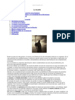 Muerte Definicion y Caracteristicas