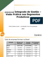 48418759-Sistema-Integrado-de-Gestao-–-Visao-Pratica-nos-Segmentos-Produtivos