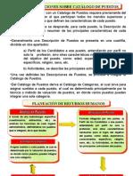 catalogo_de_puestos