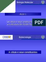 acidos nucleicos4