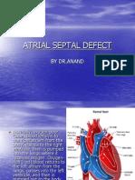 Atrial Final
