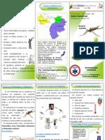 Triptico de Malaria Nov10