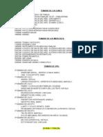 temario-1-08 CLASES