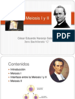 Meiosis I y II La Salle