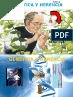genetica computacion