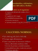 WH Hormona Para Tiro Idea, Calcitonina Metabolismo Del Calcio1