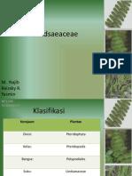 1. PPT Lindsaeaceae