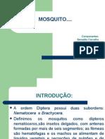 Mosquito Slides