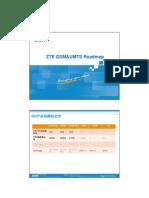 21_ZTE_GU_Roadmap_2010Q2