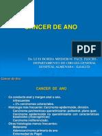 Cancer de Ano