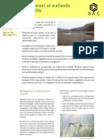 Managing Wetlands Wildlife