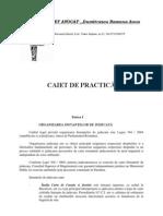 Cabinet Avocat-caiet Practica