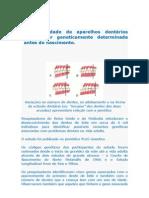 Oclusão Dental
