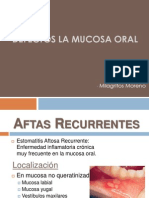Defectos de La Mucosa Oral
