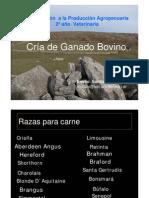 Tipos de Ganaderia.pdf