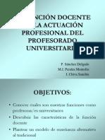 CIDU_func_docente