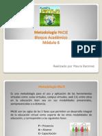 Bloque Académico - PACIE