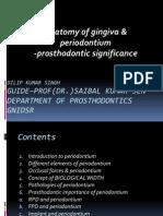 Anatomy of Gingiva and um - Pros Tho Don Tic Significance