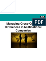 Managing Cross-Cultural Differences in a Multinational Company