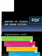 Anatomy of Tissues, Organs,