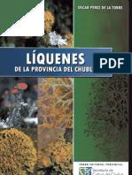 Líquenes de la provincia del Chubut