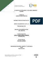 Informe JULIO Practica N 1 Sanidad Agrof