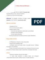 Sistema Respiratório - rinite e obstrução brônquica