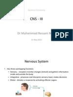 CNS 3