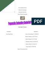 PREPARACION DE PROYECTOS22