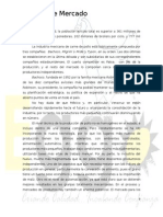 6. Estudio de Mercado (Pág.9-19)