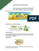 APLICACIÓN AMBIENTAL DE LOS ÁCIDOS NUCLEICOS