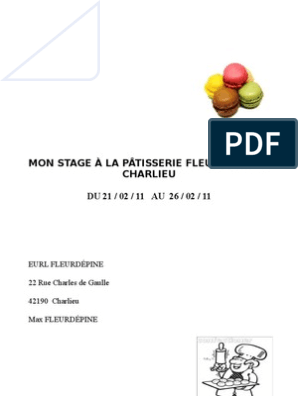 Millie Rapport De Stage Macaron Meringue