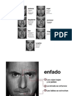 Paul Ekman - Catalogo de Gestos Faciales