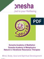 2012 Sonesha Academy Prospectus