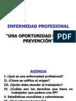 ENFERMEDAD PROFESIONAL- DECRETO 1295