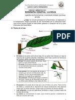 MÓDULO DE CIENCIA Y AMBIENTE Nº 001