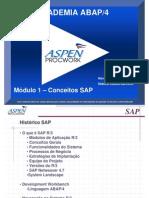 Academia ABAP - Modulo 1 - Conceitos