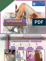 patologiasdevulva-100623233027-phpapp02