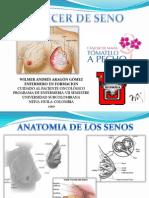 cancerdeseno-100425172409-phpapp01