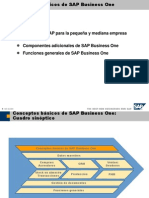 1 Conceptos básicos de SAP Business One