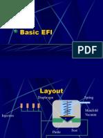 Basic EFI