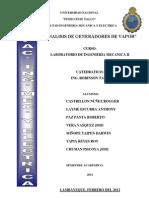 Analisis de Gene Rad Ores de Vapor