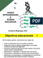 Aula 26, 27 e 28 - Ácidos Nucleicos e Nucleótidos (Estrutura e Função)
