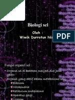 fungsi xel (wiwik)