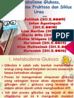 Metabolisme Glukosa, Metabolisme Fruktosa Dan Siklus Urea
