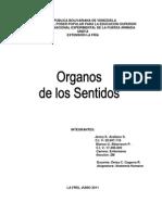 Trabajo Del Aparato Tegumentario (UNEFA)