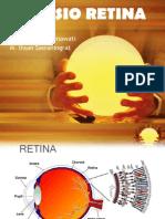 Ppt Ablasio Retina Anay-Arfi-ihsan