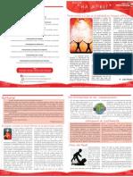 Boletín Ha Upei? de  Junio de 2012