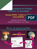 Tp Biologie Cellulaire en Mycologie