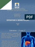 Patologia_-_Esteatose[1]